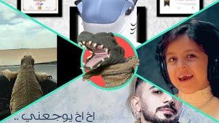التمساح الحلقة ١٠٥:القرشية الصفينييه    Temsa7LY