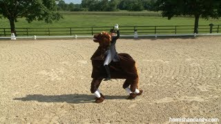 Being A Dancing Horse (2012)