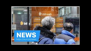 News - The wrist in the Korean market Bitcoin unfazed by threat of ban