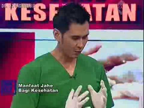 Dr Oz Indonesia Manfaat Jahe Bagi Kesehatan