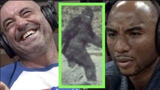 The Reason Charlamagne Believes in Bigfoot   Joe Rogan
