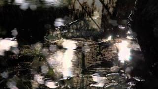 David Sylvian - Darkest Dreaming