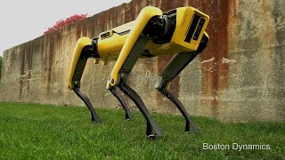 This New Robot Dog Has a Playful Spirit