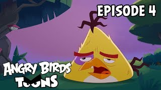 Angry Birds Toons | Hide and Seek - S2 Ep4