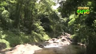 Morning Walk to Dhoni waterfall in Palakad 02 07 15