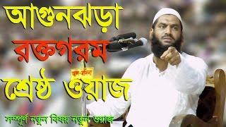 Allama Mamunul Haque bangla waz 2017 স্বাধীনতার চেতনায় আলেমদের ভূমিকা
