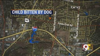 Six-year-old girl bitten by dog