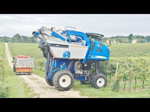 New Holland Braud VL 6080 Grape Harvester