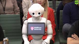 Pepper the robot talks to MPs