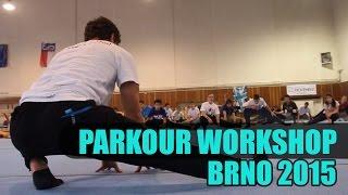 Tary Parkour Workshop   Brno 2015   Taras 'Tary' Povoroznyk