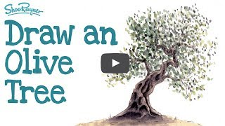How to draw and paint an Ancient Olive Tree - Watercolour