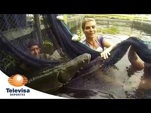 Monserrat Oliver y El Gigante Pez Pirarucú I Televisa Deportes