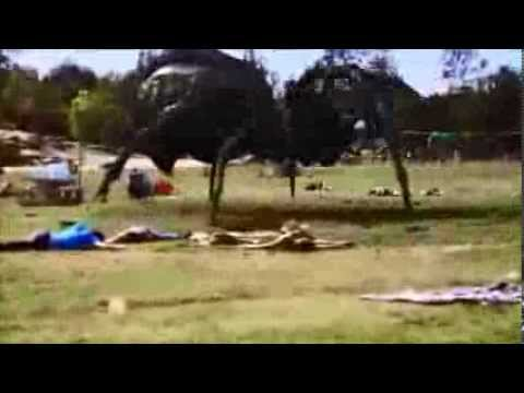 Big Ass Spider Giant spider in the park