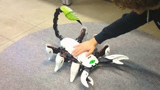 10 ADVANCED ROBOTS ANIMAL YOU NEED TO SEE