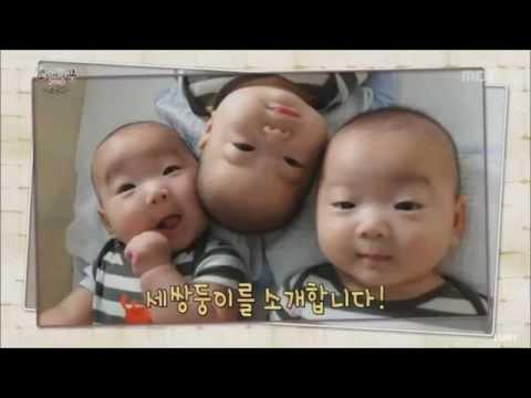 The Triplets Song (TROS) Lyrics in description