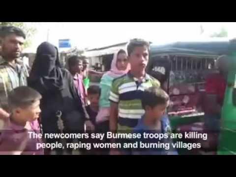 Rohingya daily news today 24/11/16 end they Myanmar government screening Rohingya girl