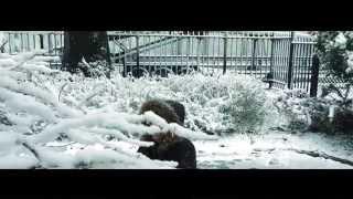 Lag Jaa Gale - Sanam - Nafiza Jahan - Hindi Music Video