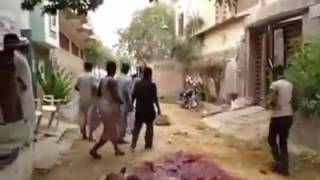 Anari Qasai - Qurbani of Most Dangerous bull of Pakistan Qurbani 2016