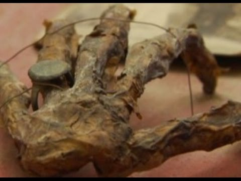 9 Unbelievable Pirate Discoveries