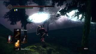 Dark Souls Playthrough Pt. 33: How to kill a Hydra