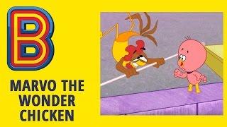Marvo the Wonder Chicken | Watch the Birdie | Full Episode