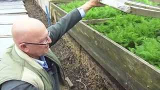Jack First - Grow Very Early Vegetables With Hot Beds