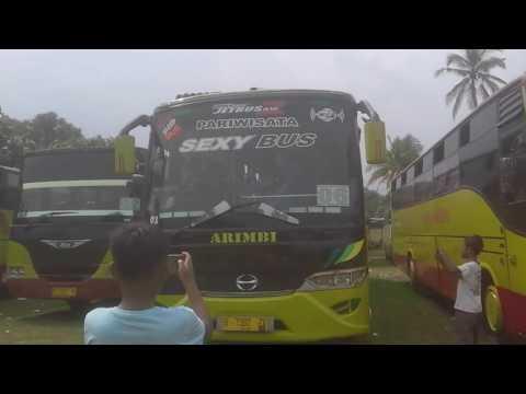 Sexy bus pegadungan