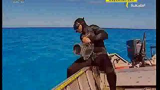قريباَ من القرش : : المجد الطبيعية
