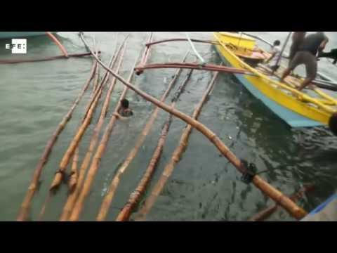 Xxx Mp4 Alerta En Filipinas Por El Tifón Nepartak 3gp Sex