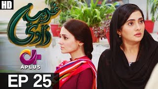 Ghareebzaadi - Episode 25 uploaded on 2 month(s) ago 6549 views