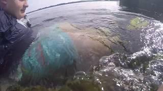 diving for river treasure in Canada