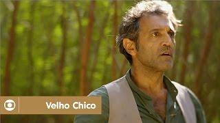 Velho Chico: capítulo 124 da novela, quinta, 04 de agosto, na Globo