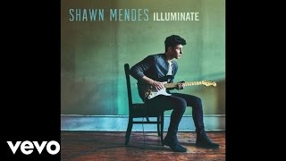 Shawn Mendes  Three Empty Words Audio