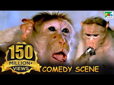 Xxx Mp4 Monkey Funny Scene Comedy Scene Jawab Hum Denge Jackie Shroff Shatrughan Sinha Sridevi HD 3gp Sex