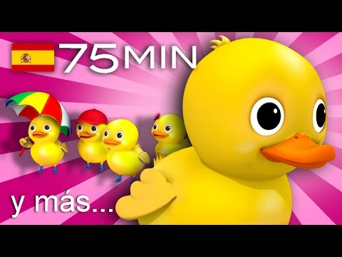 Cinco patitos Y muchas más canciones infantiles ¡75 min de LittleBabyBum
