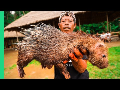 EXTREME BALI RARE Sacred Animal Meal in Bali Indonesia Once every ten years