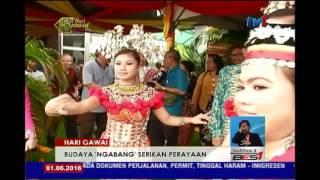 HARI GAWAI - BUDAYA 'NGABANG' SERIKAN PERAYAAN [1 JUN 2016]