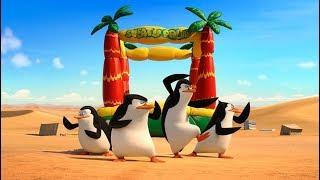 Penguins of Madagascar   Episode 1 WiiU   ZigZag Kids HD