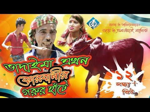 Xxx Mp4 Bangla Comedy Vadaima Ekhon Korbanir Gorur Haate ভাদাইমা এখন কোরবানির হাঁটে 3gp Sex