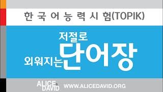한국어능력시험(TOPIK)  단어공부 한달완성! 저절로 외워지는 단어장/ TOPIK Words