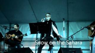 Snow On The Sahara - Acoustic Cover (Anggun)