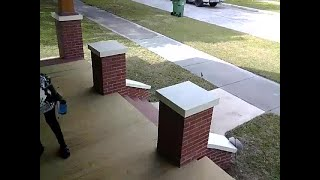Police hunt for Tampa Heights porch pirate