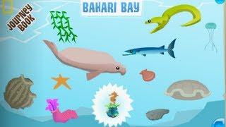 Bahari Bay - Animal Jam Journey Book Cheat Guide
