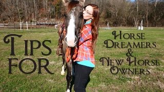 Tips for Horse Dreamers & New Horse Owners