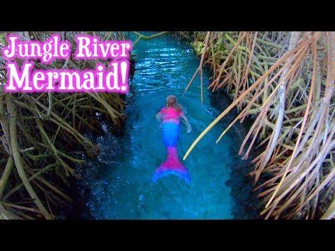 Mermaids swimming in the Jungle