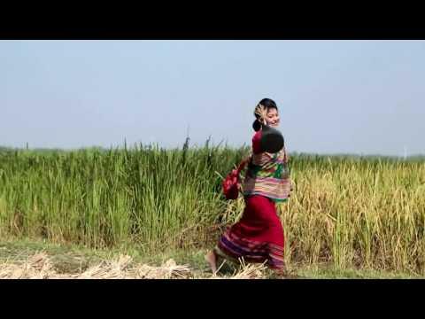 Xxx Mp4 N Hajong Dhamar Chakpara 3gp Sex