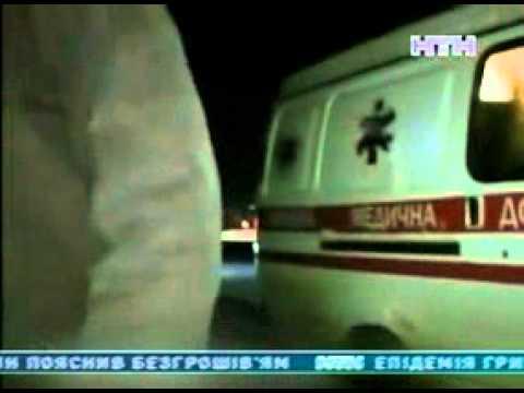 У Криму алабаї напали на людину