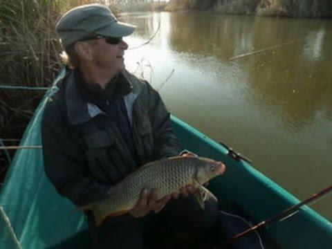 диалоги о рыбалке ловля сома с берега на