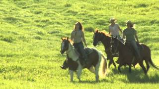 Three Young Women on Horses, Riding Across the Green Meadow