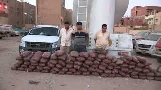 إحباط تهريب كميات كبيرة من نبات البانجو المخدرو2,200 كيلو جرام لمخدر الكوكايين إلى داخل البلاد